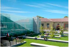 Foto Universidad San Sebastián Osorno Los Lagos